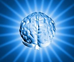 elastic-brain-e1366663570234